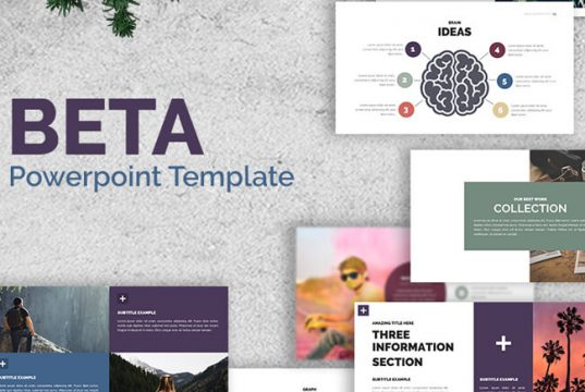 Impeccable and Polished Looking Beta Business PowerPoint Template