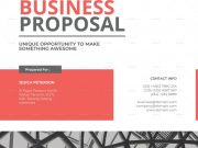 Formal Business Proposal template by maculinc